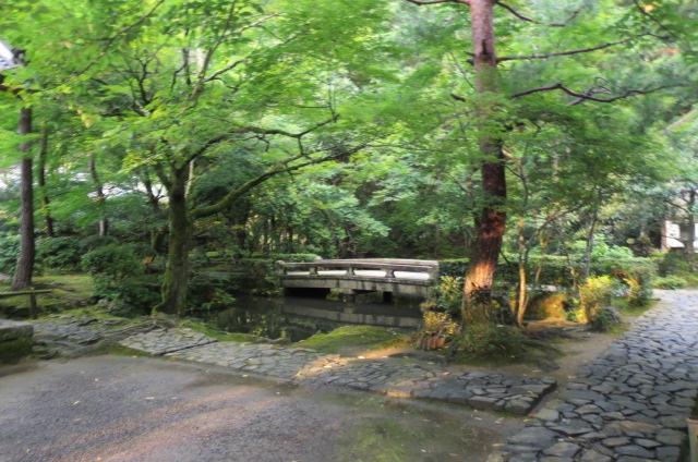 法然院・涼やかな夏・夕暮れの庭。