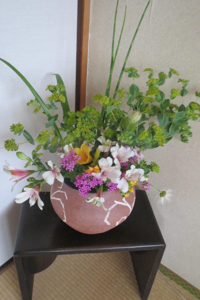 八幡市・「まるごと館」で200円也の花