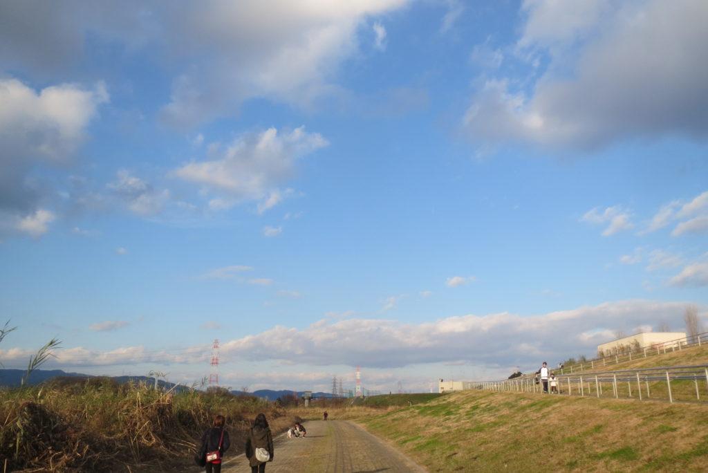 新年・散歩日和だ!