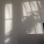 ふと気づく・壁に素敵な影が・・。